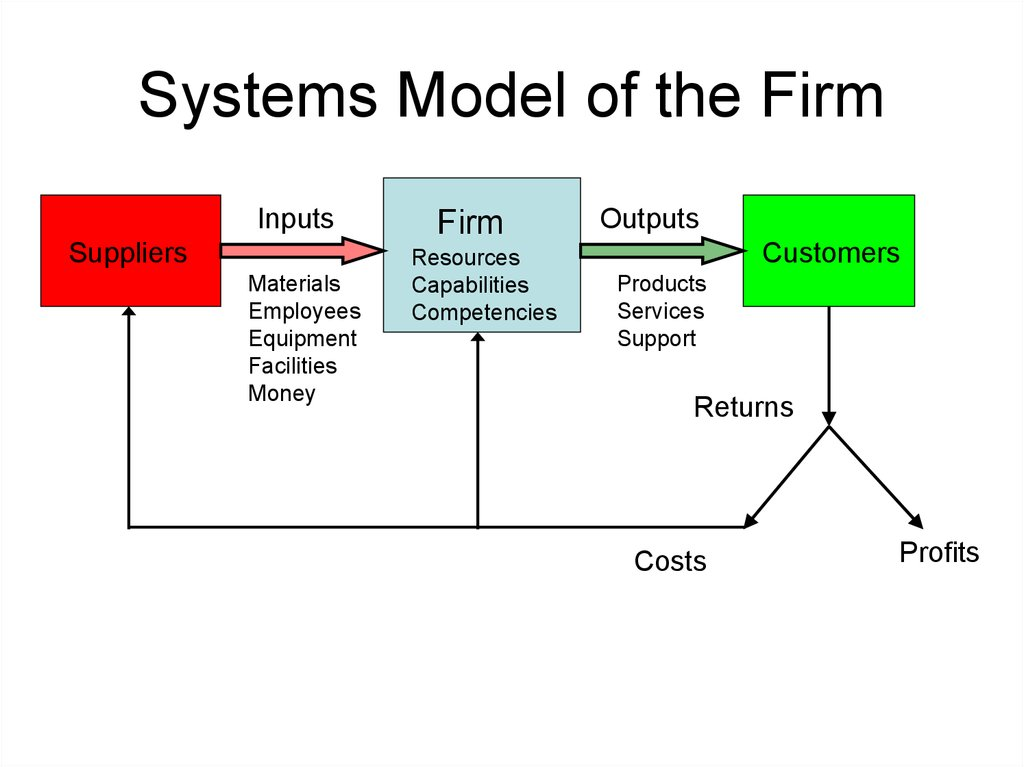 Systems Model of the Firm