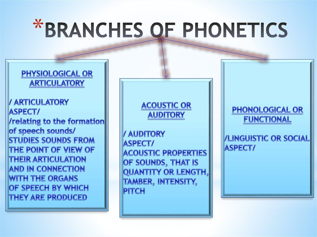 BRANCHES OF PHONETICS