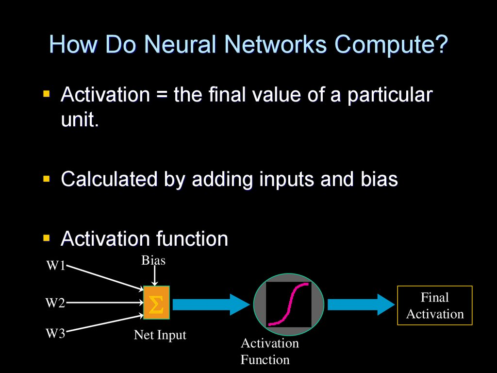 How Do Neural Networks Compute?
