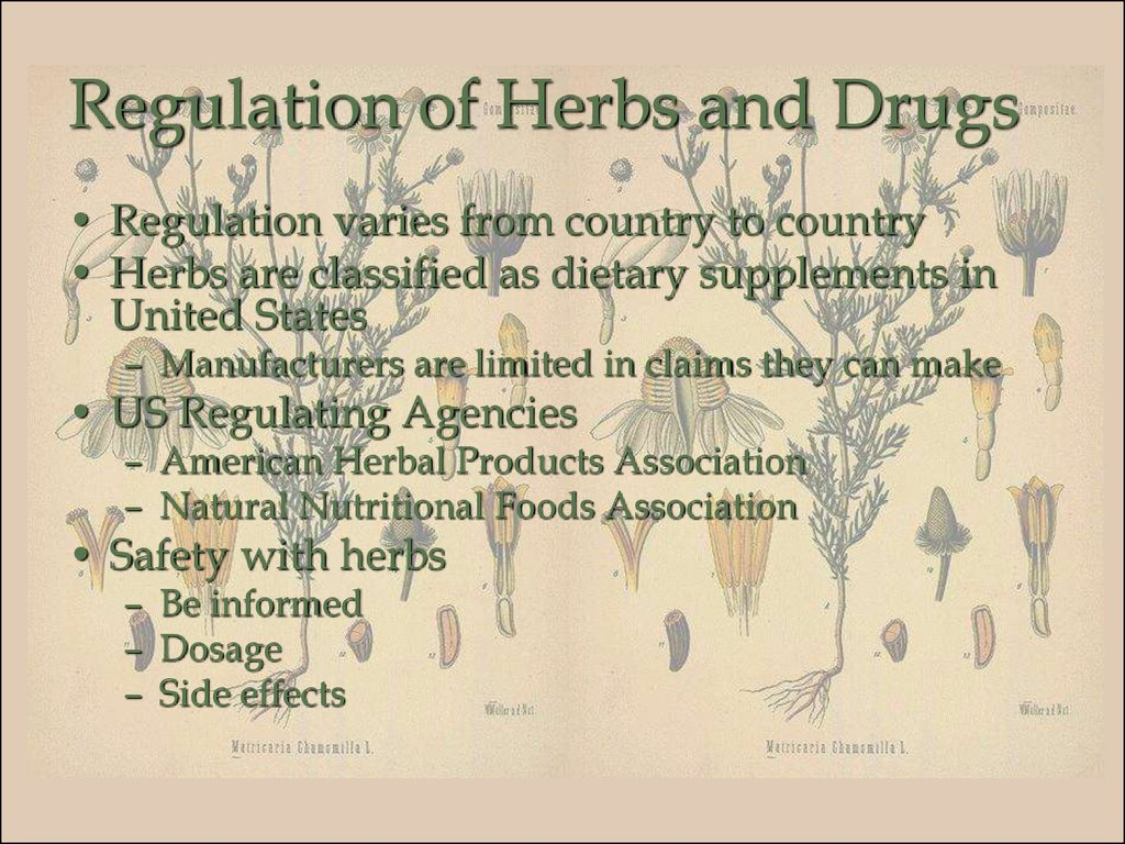 Regulation of Herbs and Drugs