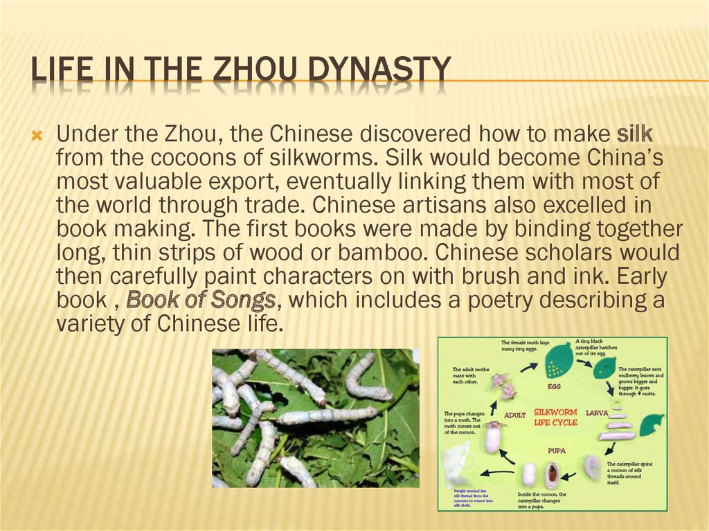 Life in the zhou dynasty