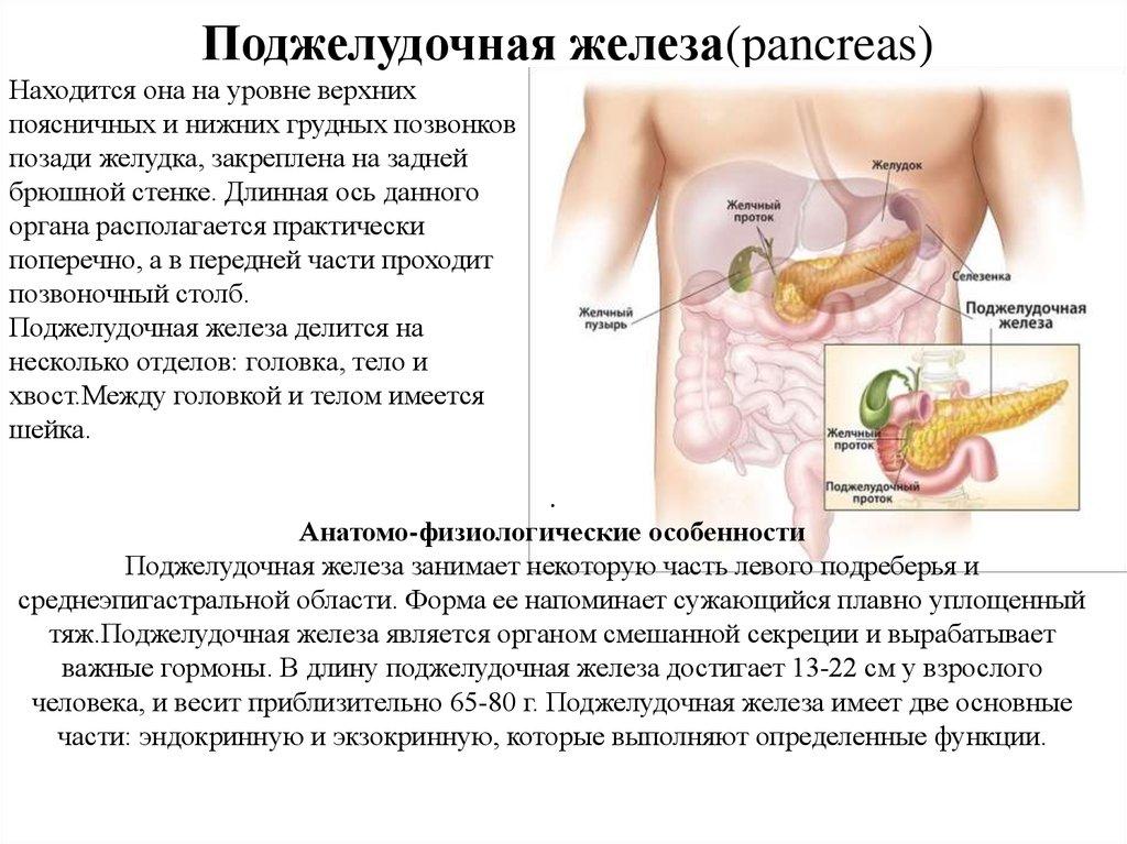 Реактивные изменения печени и поджелудочной железы