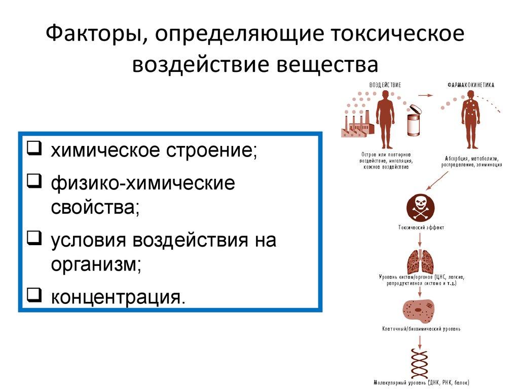 Токсикология токсические вещества действие ядовитых на организм