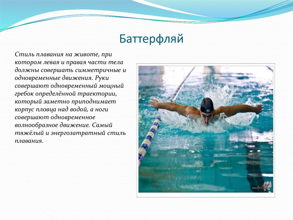 Стили плавания фото и описание