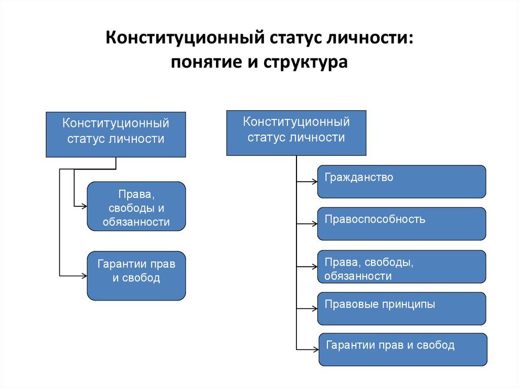Шпаргалки конституционные статуса личности принципы правового — pic 8
