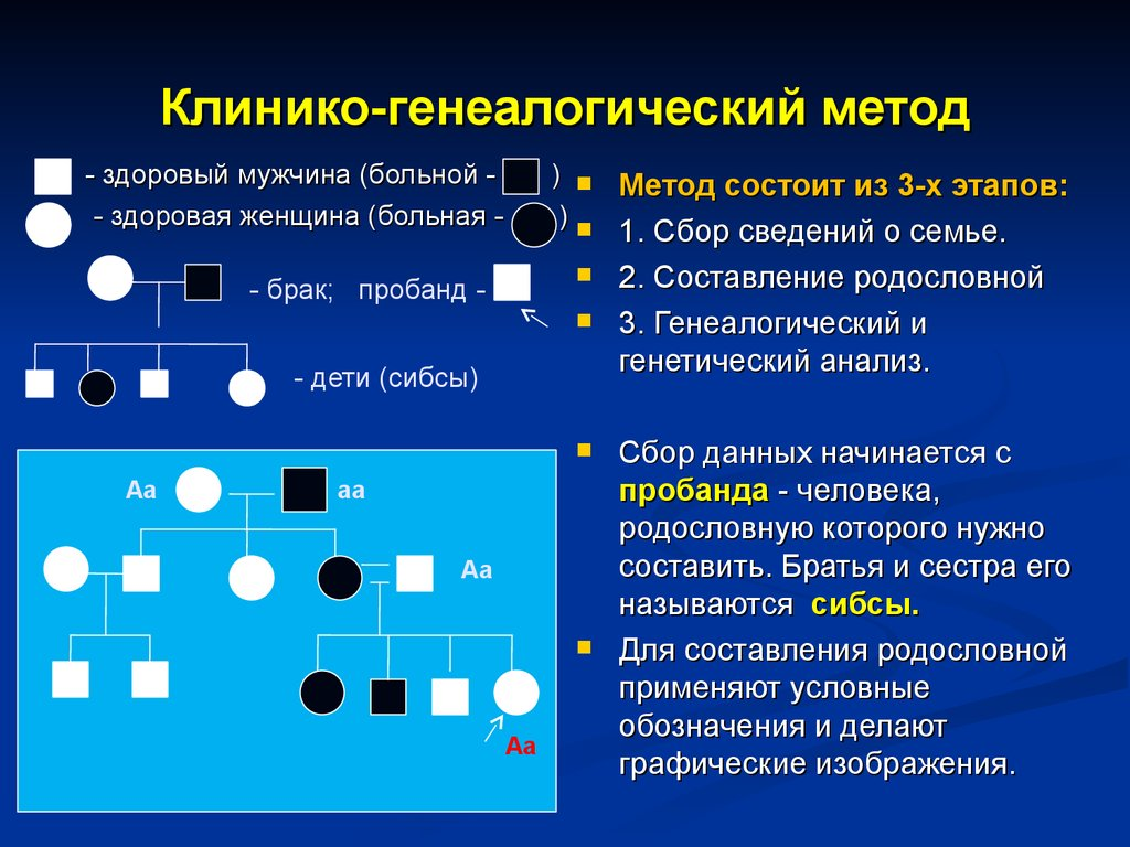 генеалогический метод разбор заданий проезда «АльфаСтрахование