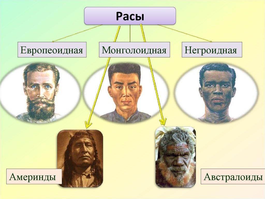 Картинки по запросу расы человека картинки