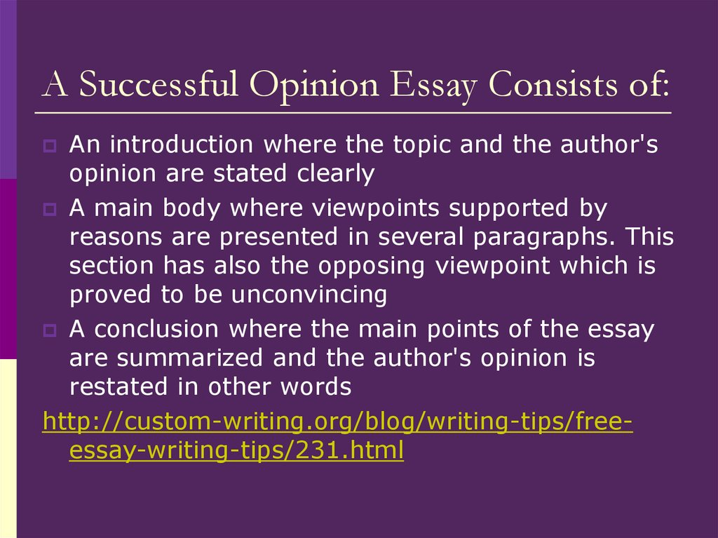 A Successful Opinion Essay Consists of: