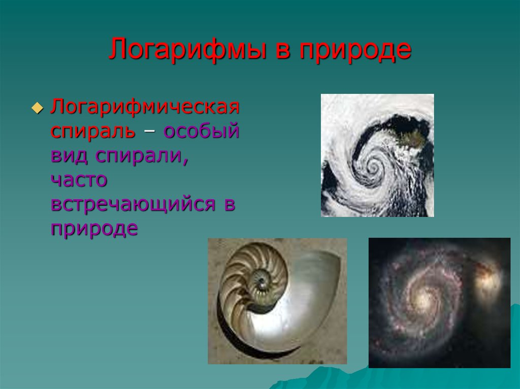 надключичных картинки логарифмы в природе петербурге существует