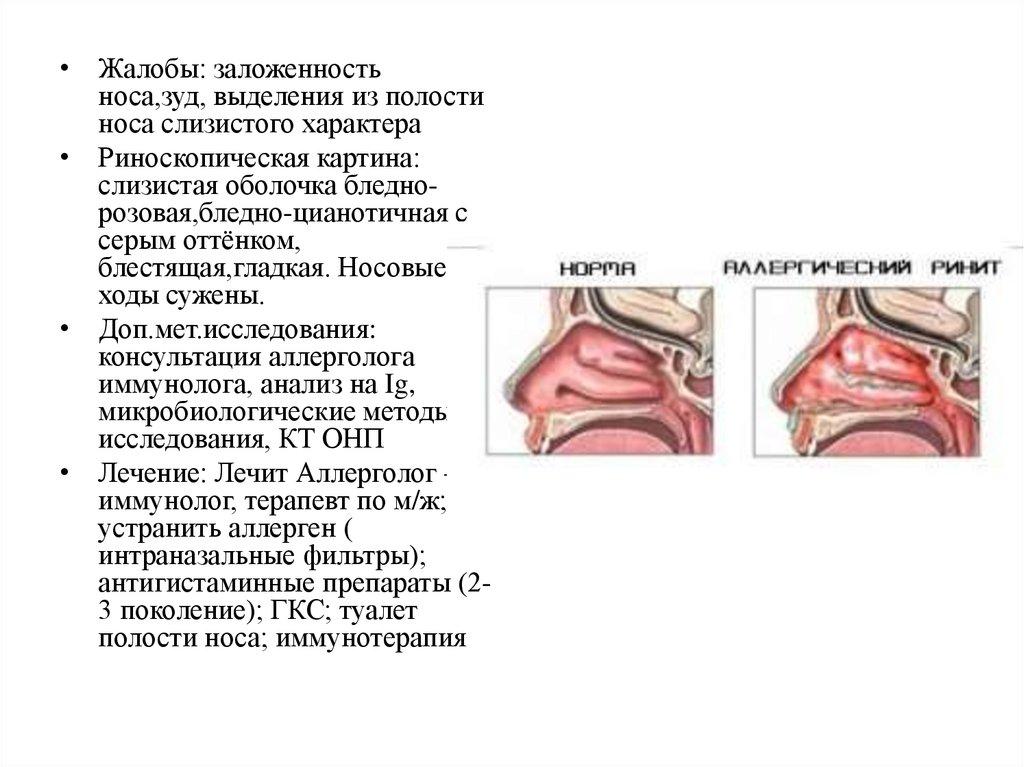 санкт петербургская педиатрическая медицинская академия кафедра эндокринологии