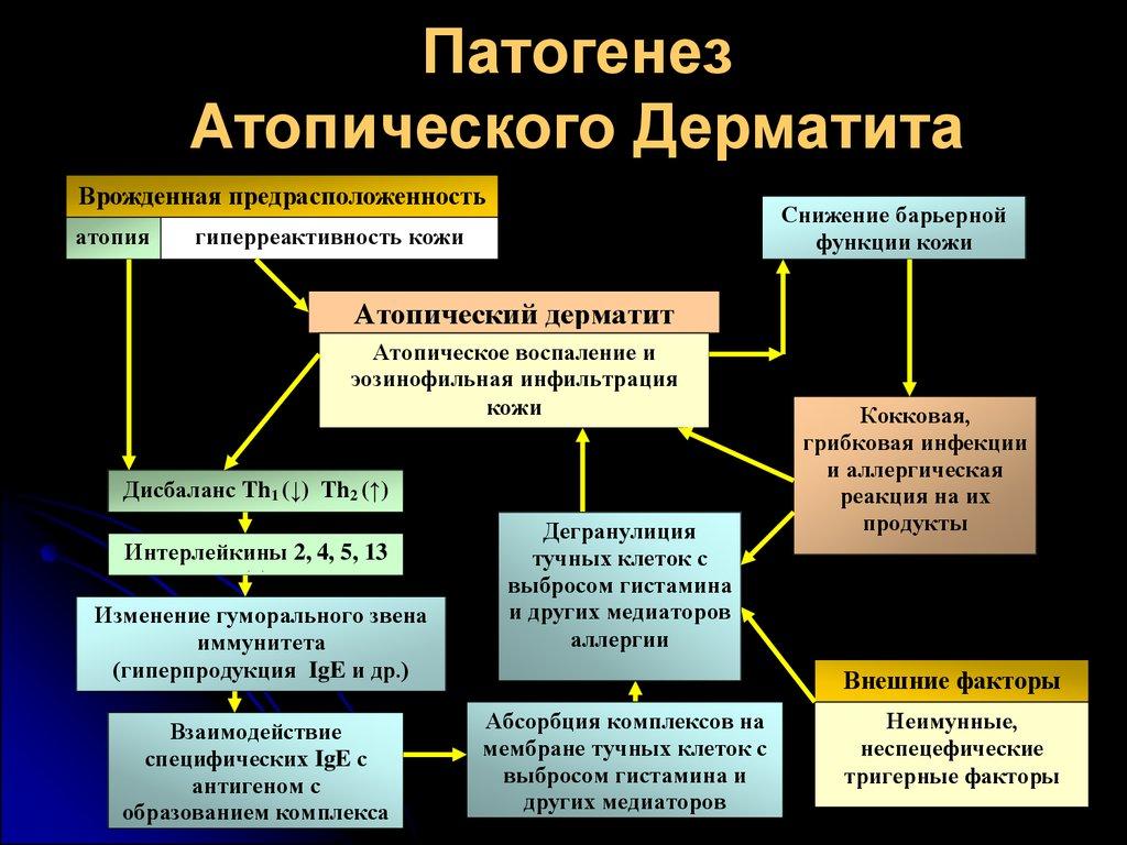 Атопический дерматит иммунология