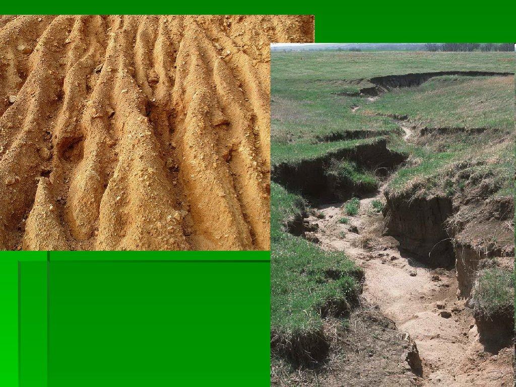 охрана земельных ресурсов реферат по химии