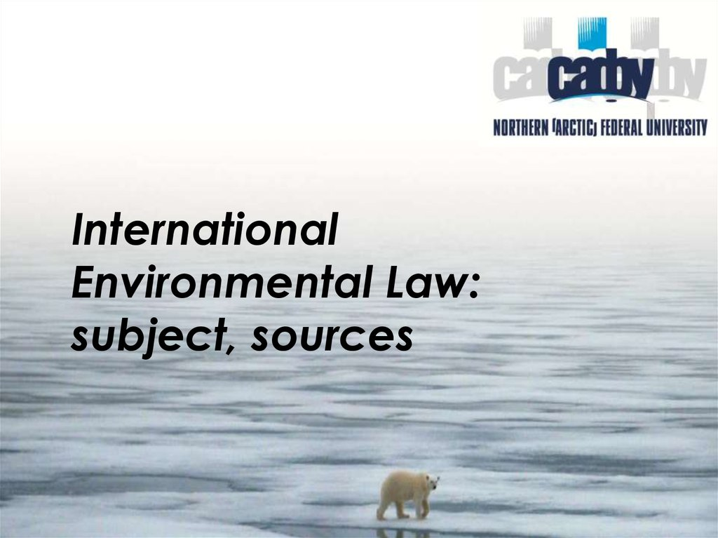 International Environmental Law: subject, sources