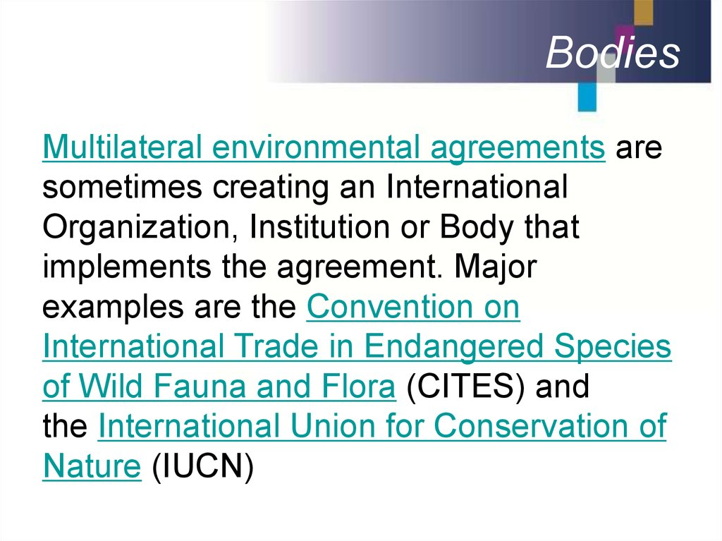 International Environmental Law Subject Sources Online Presentation