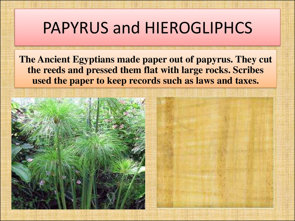 PAPYRUS and HIEROGLIPHCS