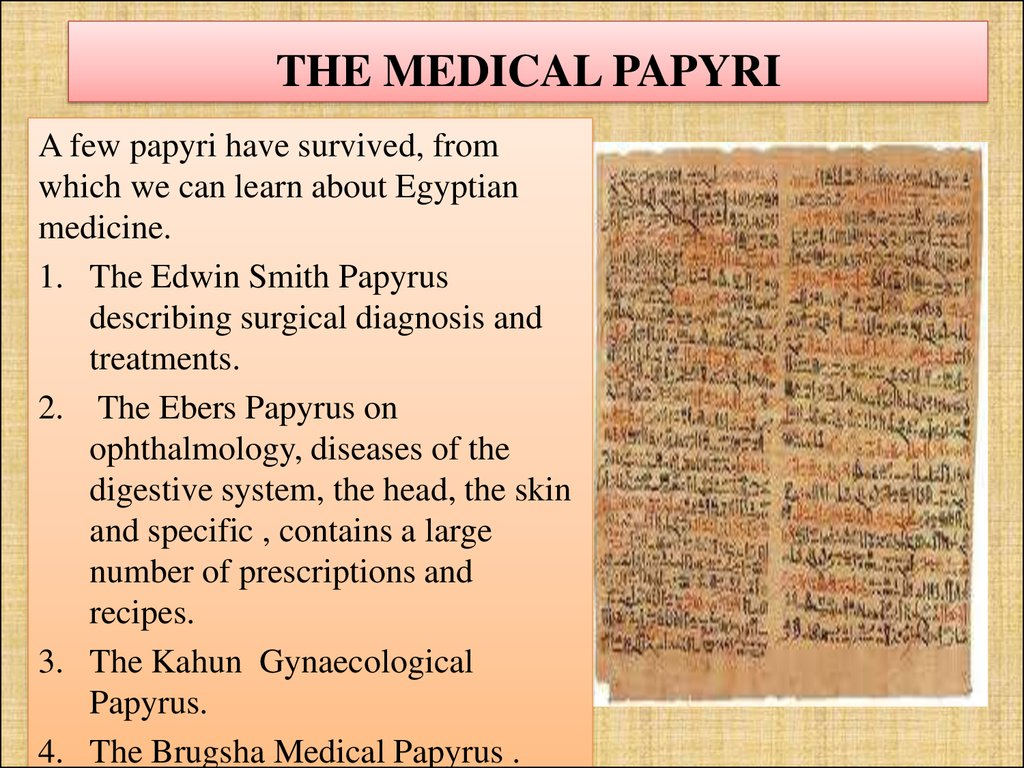 THE MEDICAL PAPYRI