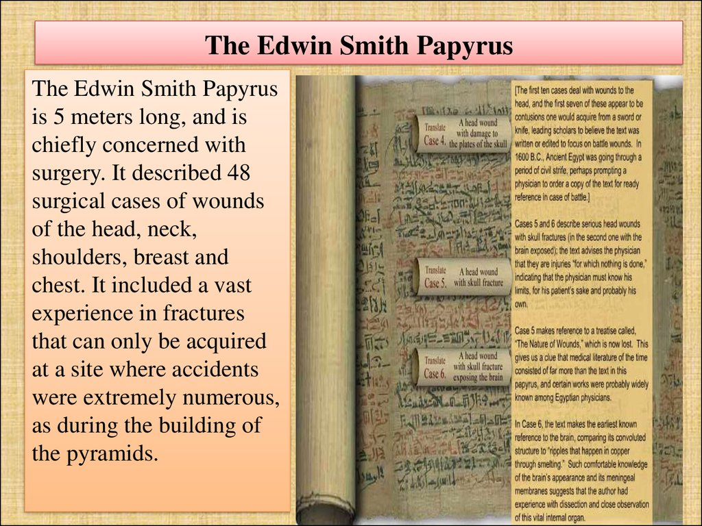 The Edwin Smith Papyrus