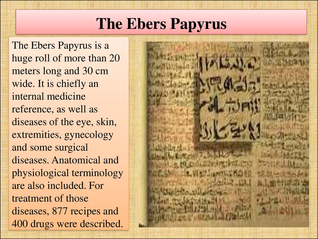 The Ebers Papyrus