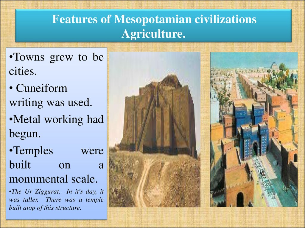 Features of Mesopotamian civilizations Agriculture.