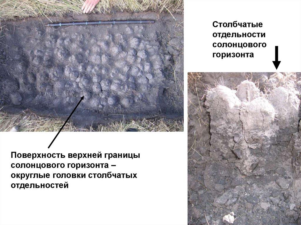 Засоленность бетона купить раствор бетона в спб