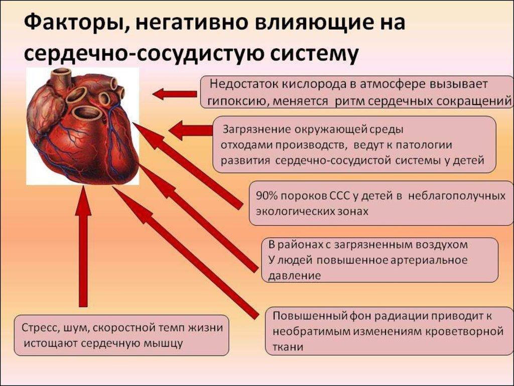 особенности ухода за больными с заболеваниями сердечно-сосудистой системы при болях в сердце