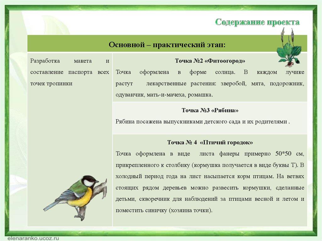 Картинки для экологической тропы в детском саду