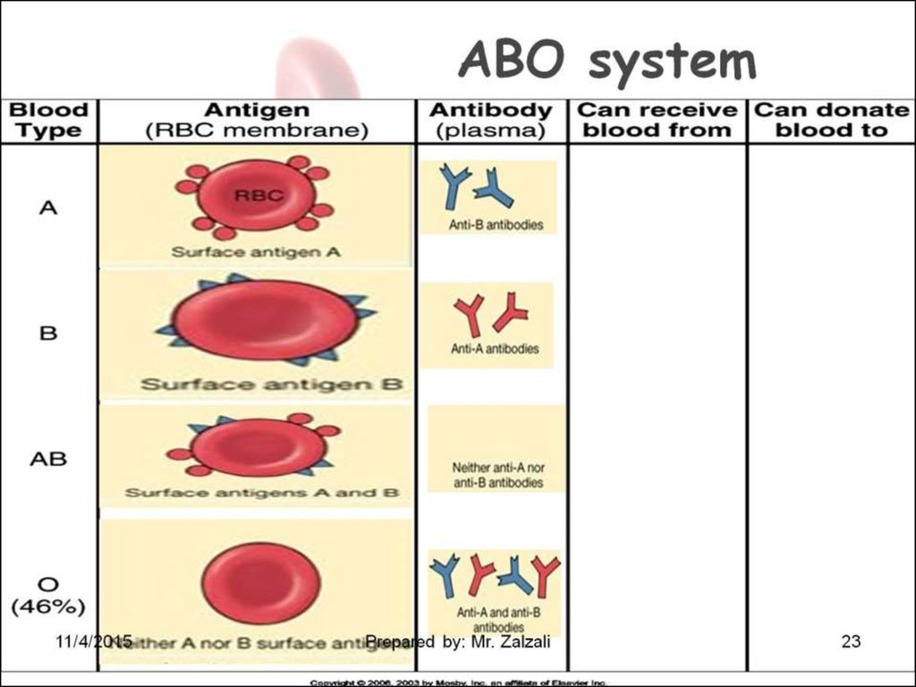 blood components questions and answers Medical terminology: chapter 13 - blood the collection and later reinfusion of a patients own blood or blood components a preparation of red blood cells.