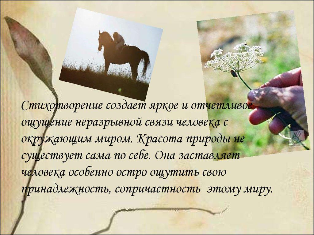 отделочников стихи слияние с природой она вас