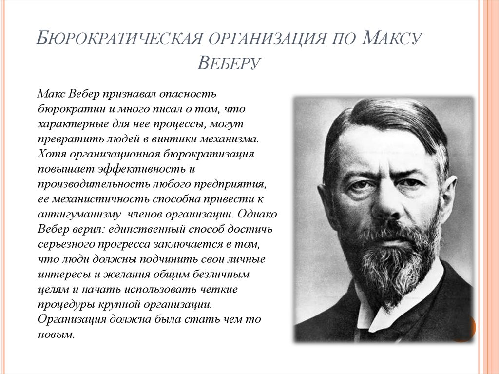 criticism for max weber's bureaucracy
