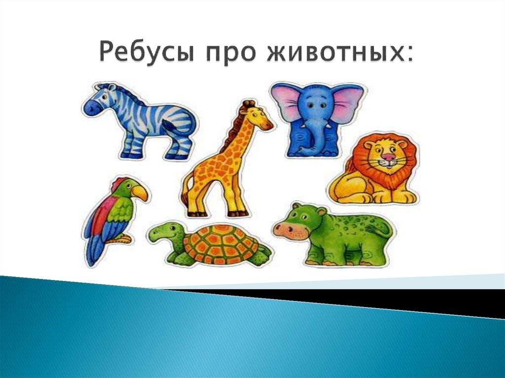 Ребусы про животных в картинках
