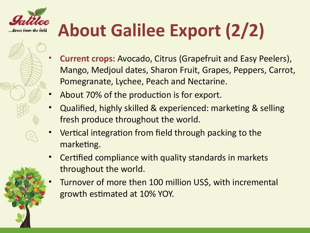 About Galilee Export (2/2)