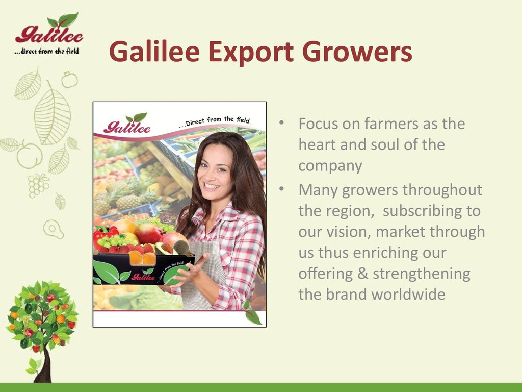 Galilee Export Growers