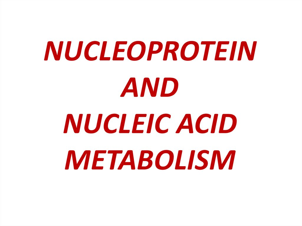 NUCLEOPROTEIN AND NUCLEIC ACID METABOLISM