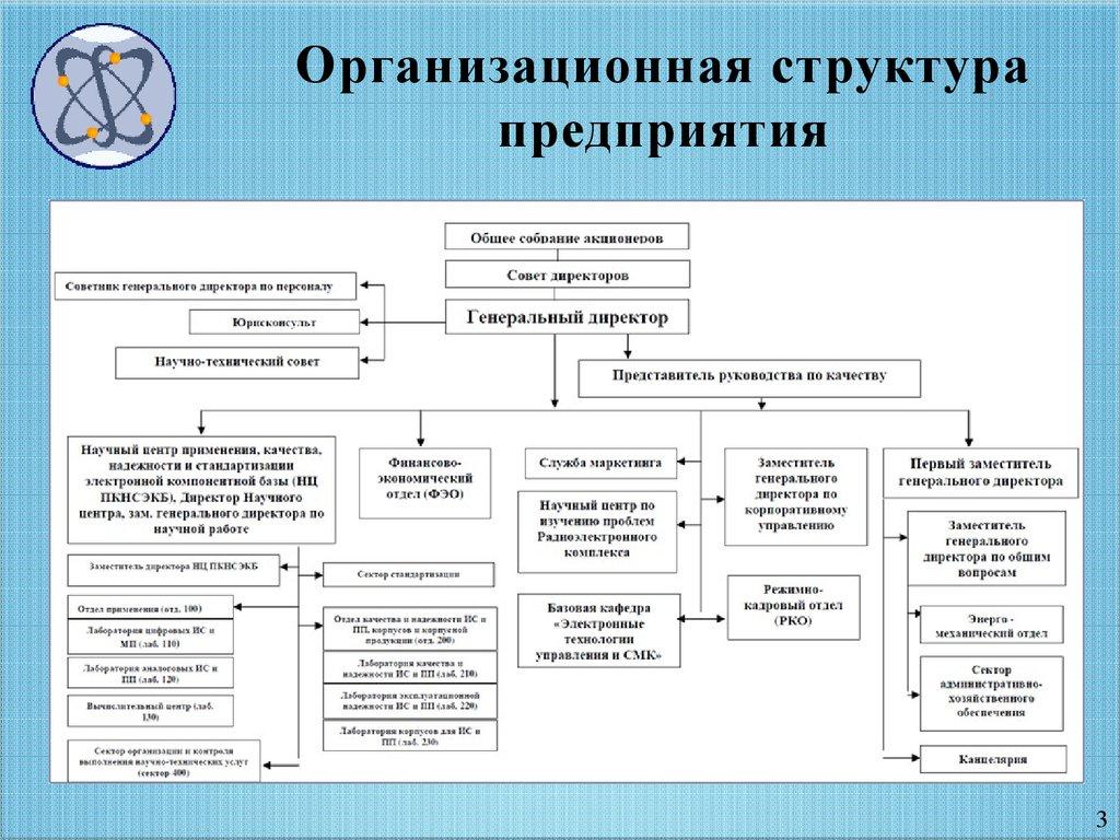 организационная структура компании по реализации программного обеспечения