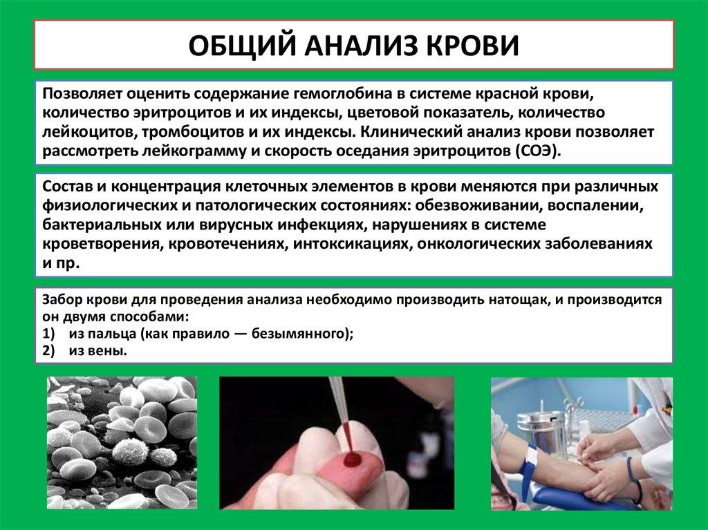 Анализов методики крови исследования проведения на впч расшифровка анализа крови