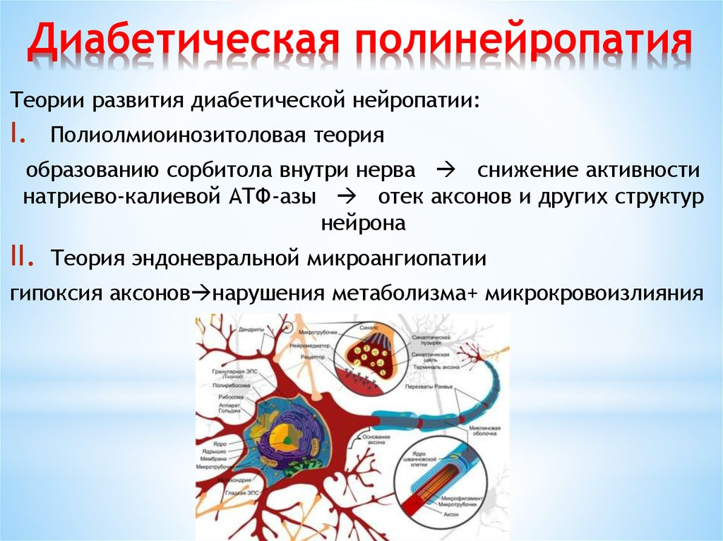 Кардиоваскулярная нейропатия при сахарном диабете