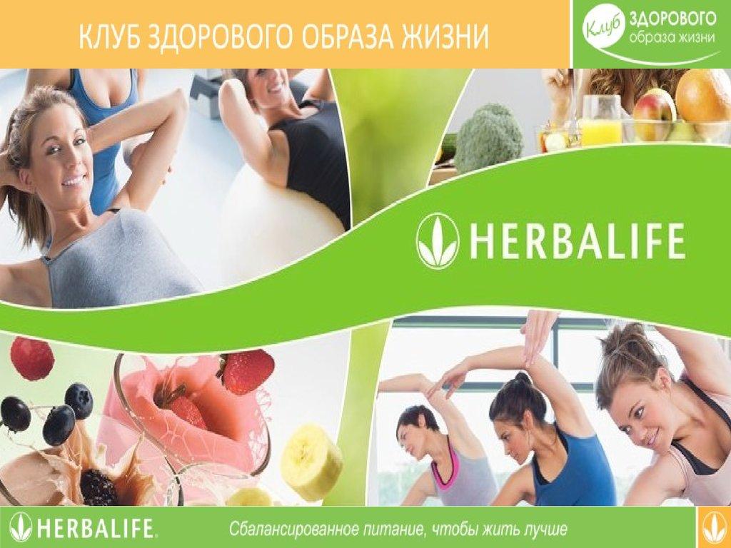 клуб здорового образа жизни отзывы