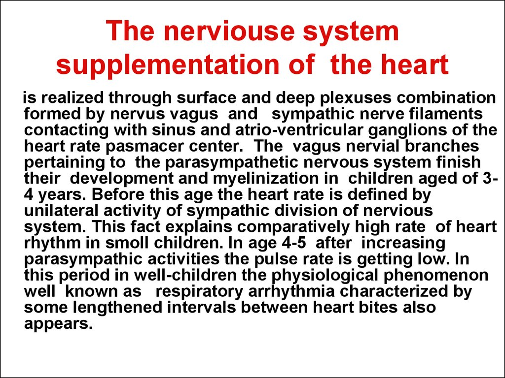 The nerviouse system supplementation of the heart