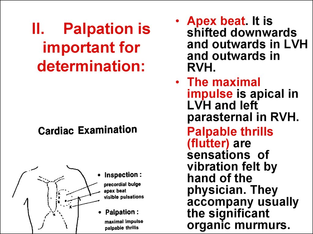 II. Palpation is important for determination: