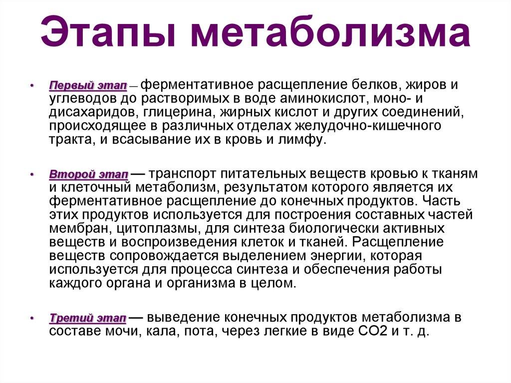 какие аминокислоты разганяют метаболизм Санкт-Петербурга отзывами Дорого