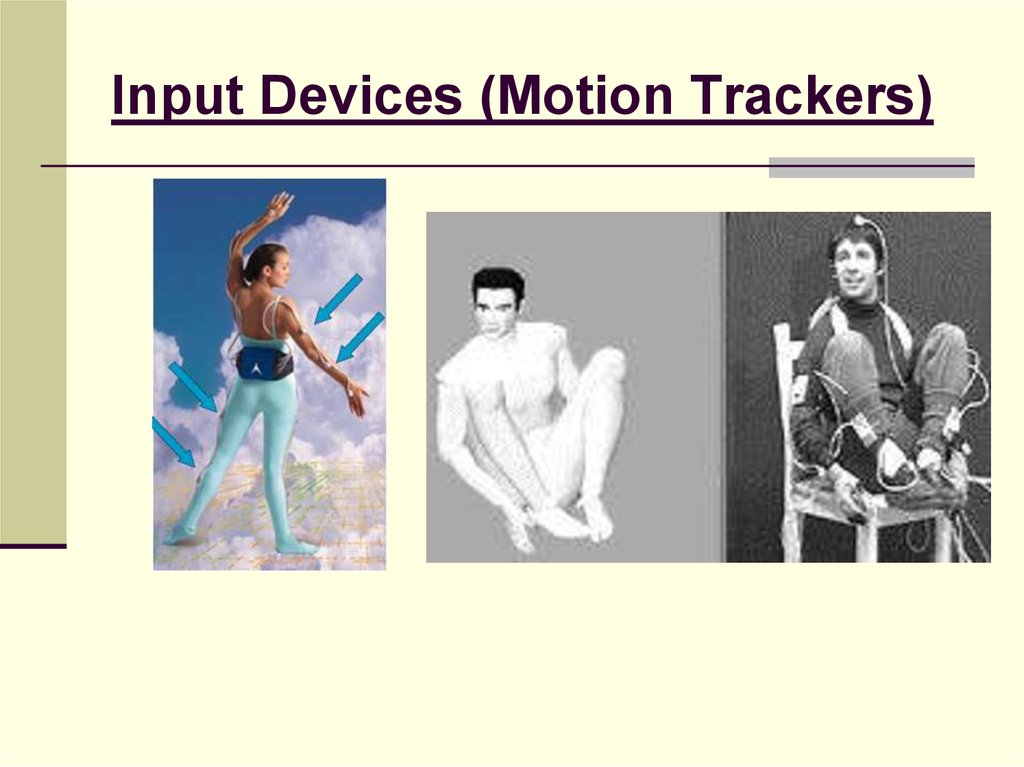 Input Devices (Motion Trackers)