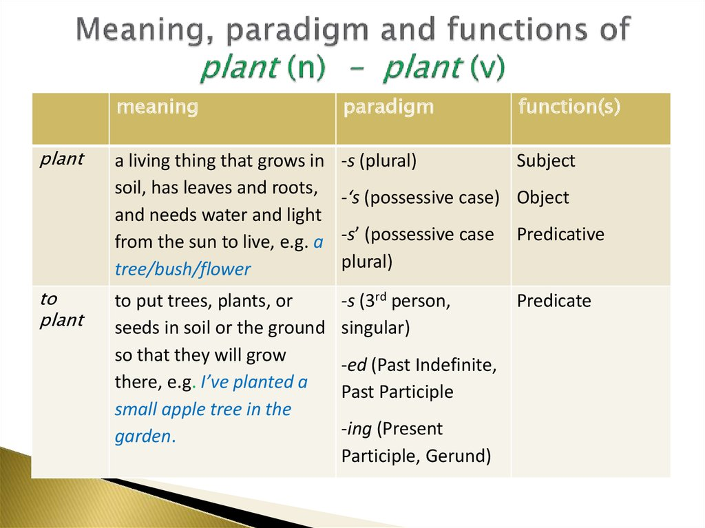 Meaning, paradigm and functions of plant (n) – plant (v)