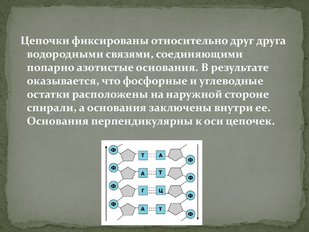 ebook Фантазии