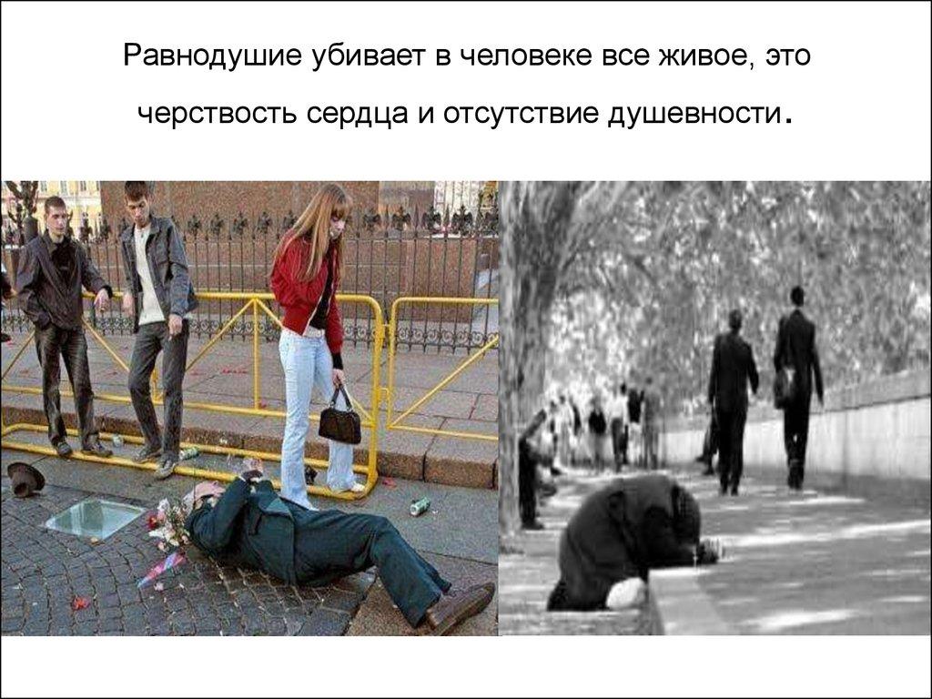 картинки равнодушие бессердечие необходимо