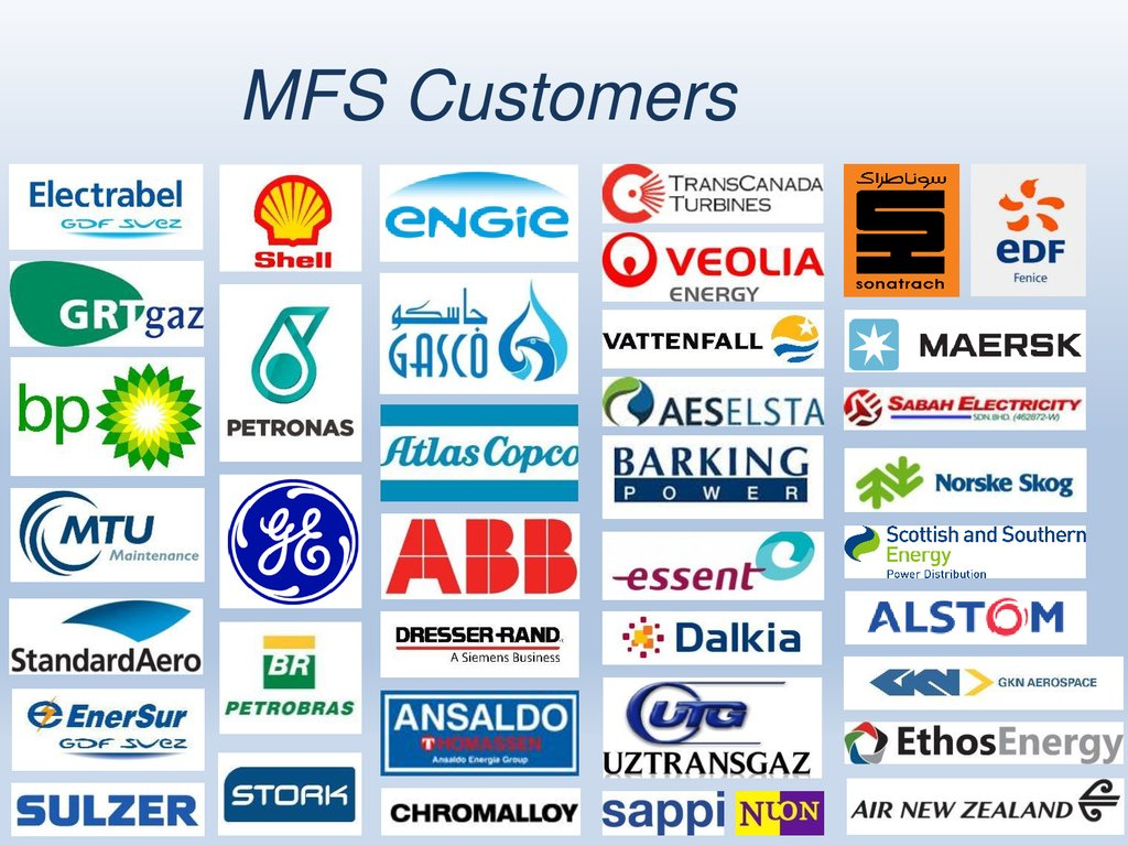 Mechanical Field Support BV (MFS) - online presentation
