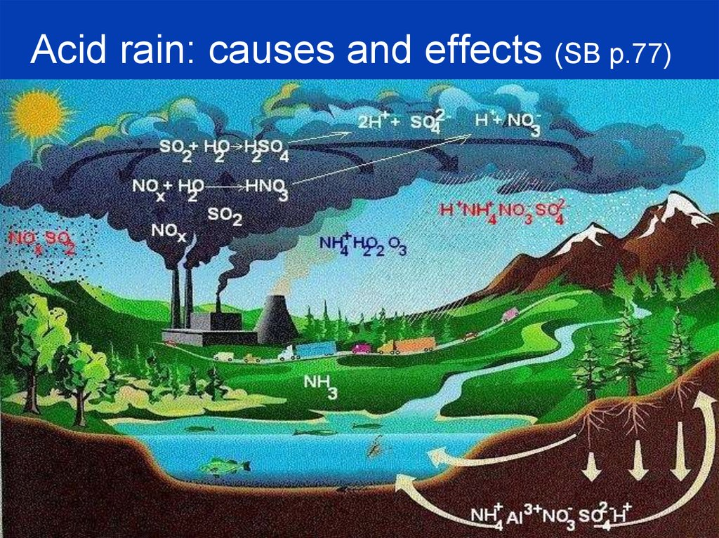 Acid rain: causes and effects (SB p.77)