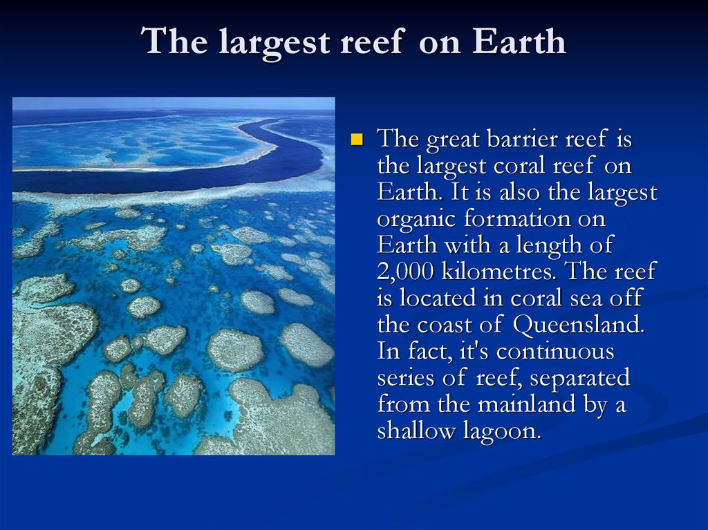 The largest reef on Earth