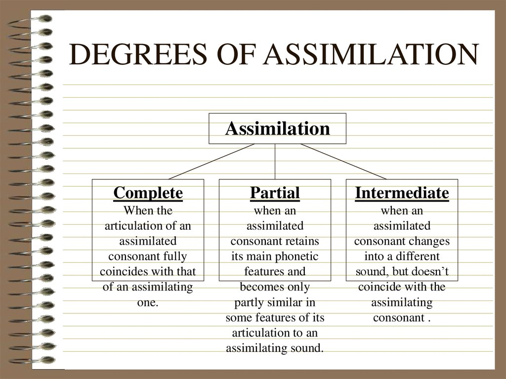 DEGREES OF ASSIMILATION