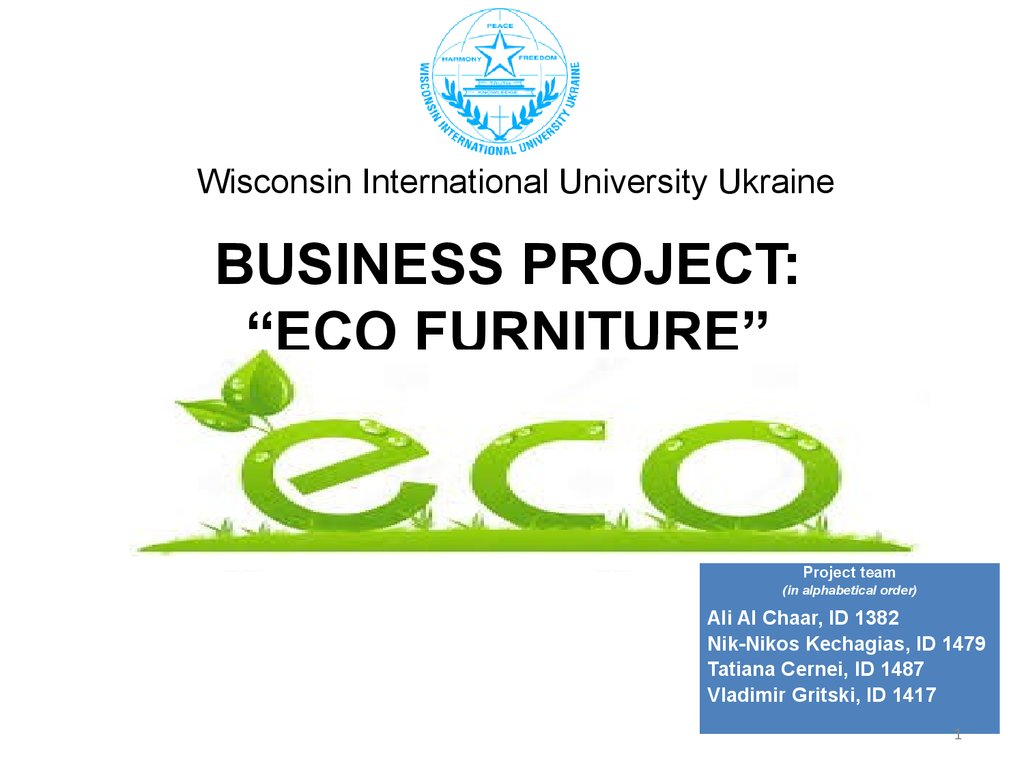"Business Project: ""ECO furniture"""