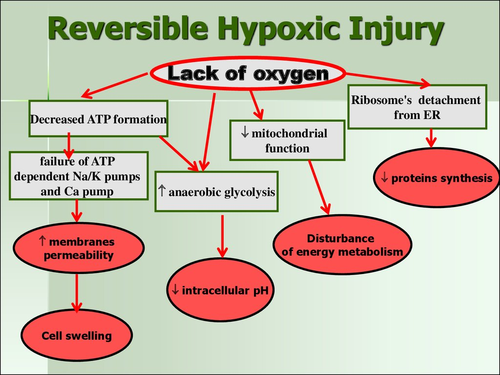 Reversible Hypoxic Injury
